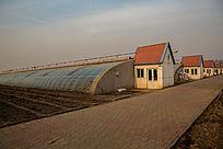 温室科学种植基地