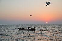 海上日出渔船出海海鸥飞翔