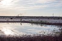 湿地的一片水域倒映落日蓝天白云