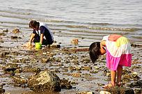海边玩耍的小女孩