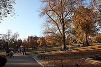 波士顿公园匆忙的人们