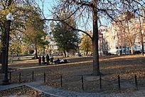 波士顿公园惬意休息的人群