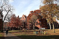 哈佛大学内绿地景观
