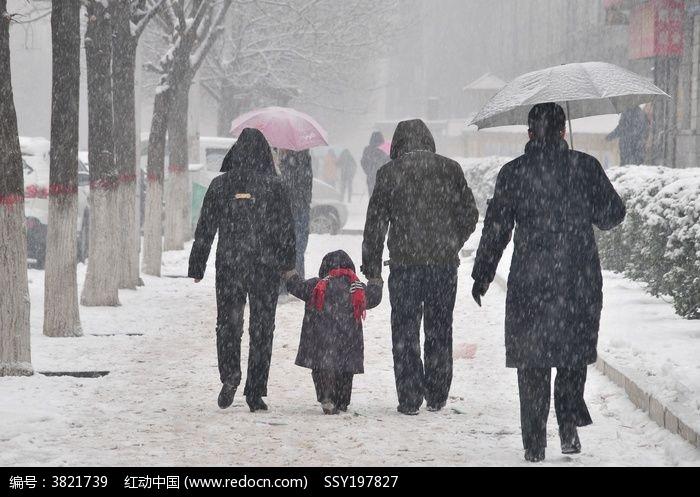 风雪中的一家人背影图片图片