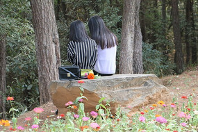 公园里的学生