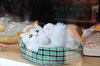 可爱的毛绒玩具