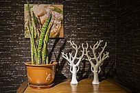 盆栽植物和珊瑚雕塑