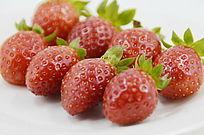 摆放整齐草莓持写图片