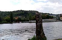 伏尔塔瓦河岸边的根雕