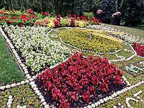 公园里的花坛