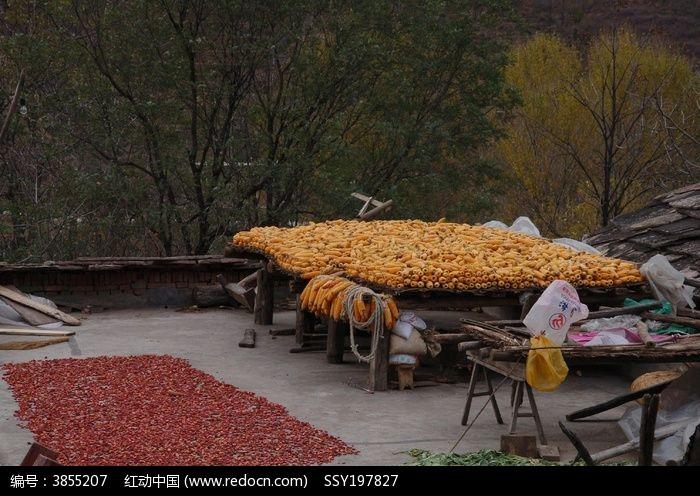 秋天的山村丰收景象图片图片