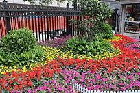 国庆公园鲜花展布置