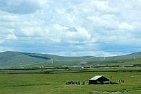西藏蓝天白云大草原牧民包