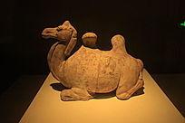 唐三彩卧姿骆驼