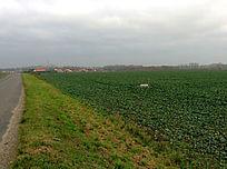 乌云下的田野与清晰可见的村庄及若隐若现的城堡