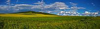 草原风光全景图
