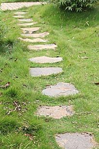 公园草丛中的石砖块小路