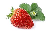 草莓与叶的守候