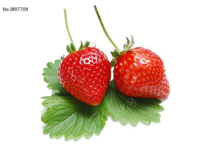 草莓结构示意图