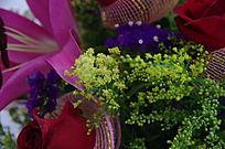 花束中的黄莺花