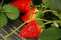 红草莓果子