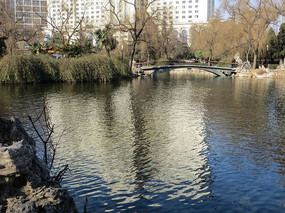 西苑公园情人桥