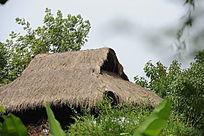 西溪湿地的茅屋局部