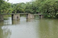 西溪湿地的人行桥