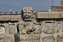 卷舌头的石狮子怀抱小狮子