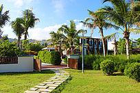 种满椰树的花园别墅