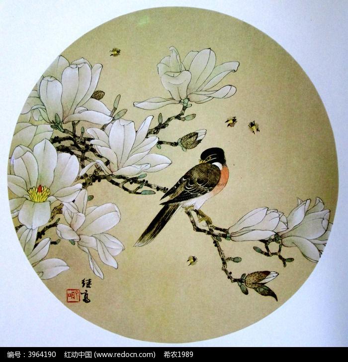 中国画玉兰花图片图片