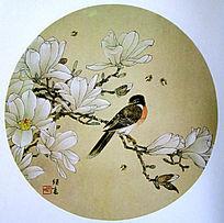 中国画玉兰花图片