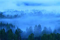 大兴安岭夜雾