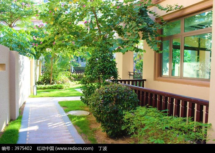 海南清水湾别墅庭院绿化景观图片