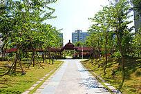 海棠湾六和悦城小区园林道路景观
