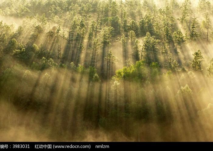 山林云海光影图片