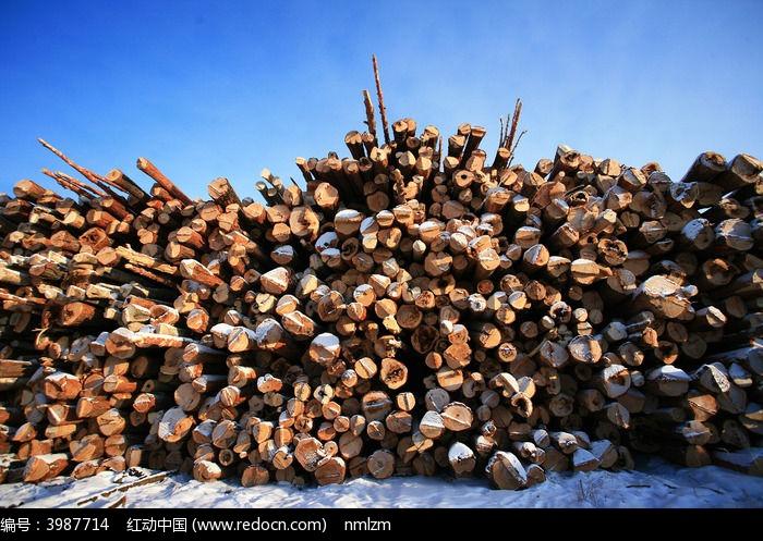 木场木材图片