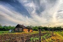 农村田园风光