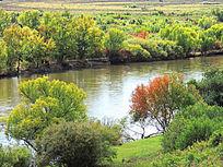 湿地河畔丛林秋色