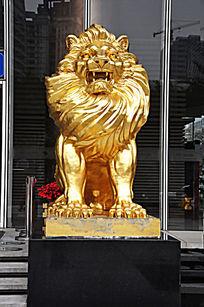 咆哮的金色狮子