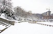 公园里被雪覆盖的路与路旁的树林