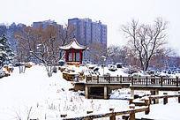 公园里的桥与凉亭