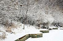 公园里的雪挂