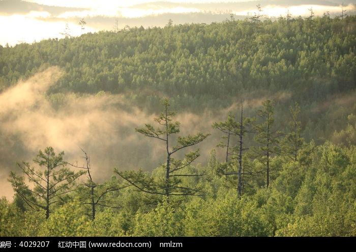 原创摄影图 自然风景 森林树林 山林云海光影  请您分享: 红动网提供