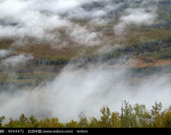 林海山谷晨雾图片