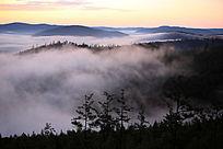 大兴安岭林海晨雾