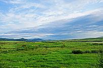 额尔古纳河流域草甸