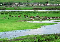 额尔古纳河流域村庄牧场