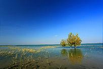 水天一色的湖水