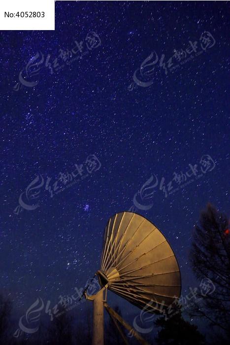 原创摄影图 自然风景 森林树林 星空图片